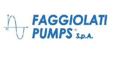 Pumps by Faggiolati