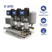 Ebara 3GPE Matrix 5-3T/0.65 ESPD 304H